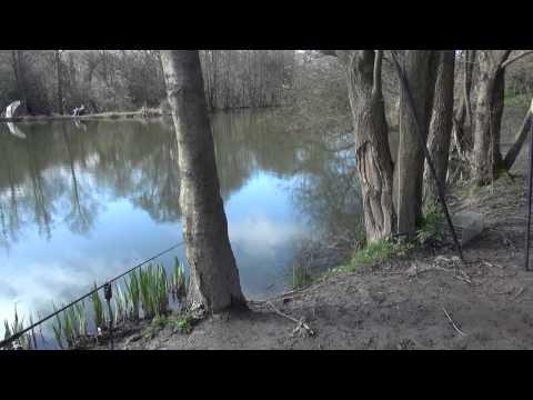 STRAWBERRY FIELDS FISHERY, ROYAL TUNBRIDGE WELLS, KENT