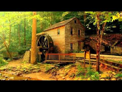 BEAUTIFUL HOUSES FOUND IN FOREST