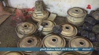 تزايد ضحايا الألغام الحوثية بمحافظة الضالع