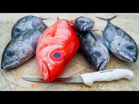 800ft DEEP Water Snapper! Catch Clean Cook- Florida Keys Deep Drop