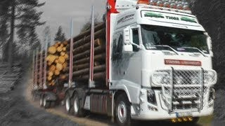 Timber truck loading - Sweden