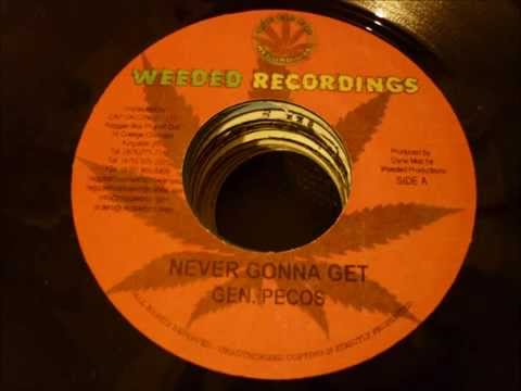 BLACK SURVIVOR RIDDIM - WEEDED RECORDINGS