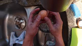 First Person Steam-Boiled Eggs