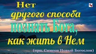 Богопознание - Пестов Николай Евграфович