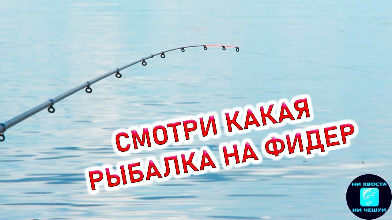 РЫБАЛКА НА ФИДЕР! Рыбалка в июне 2020.