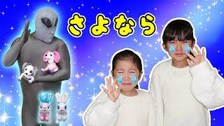 「さようなら、さくら・クッキー・・・」~迷子ペットのお世話~ハローズーマーと過ごした日々。himawari-CH thumbnail