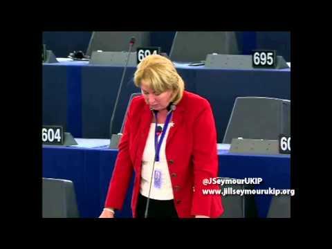 HS2 a flawed EU vanity project - Jill Seymour MEP