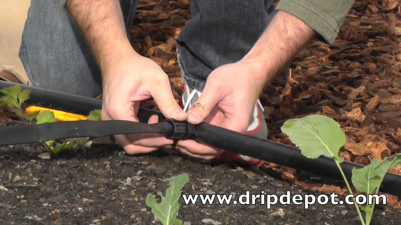 How To Install A Drip Irrigation System For Large Irregular Gardens You