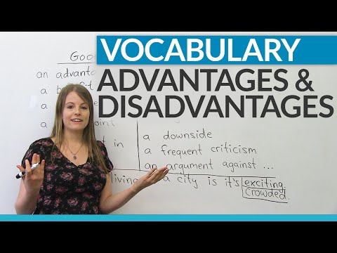 Disadvantages of bilingual education/ essay