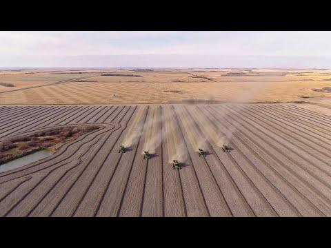 Hughroy Farms Harvest 2019 Saskatchewan Canada