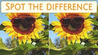 [ Brain games ] ( 3 ) Ep.005 Things_sunglasses_01 | Spot the difference | photo puzzles | Healing