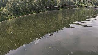 На рыбалку с эхолотом Сканируем щучье озеро