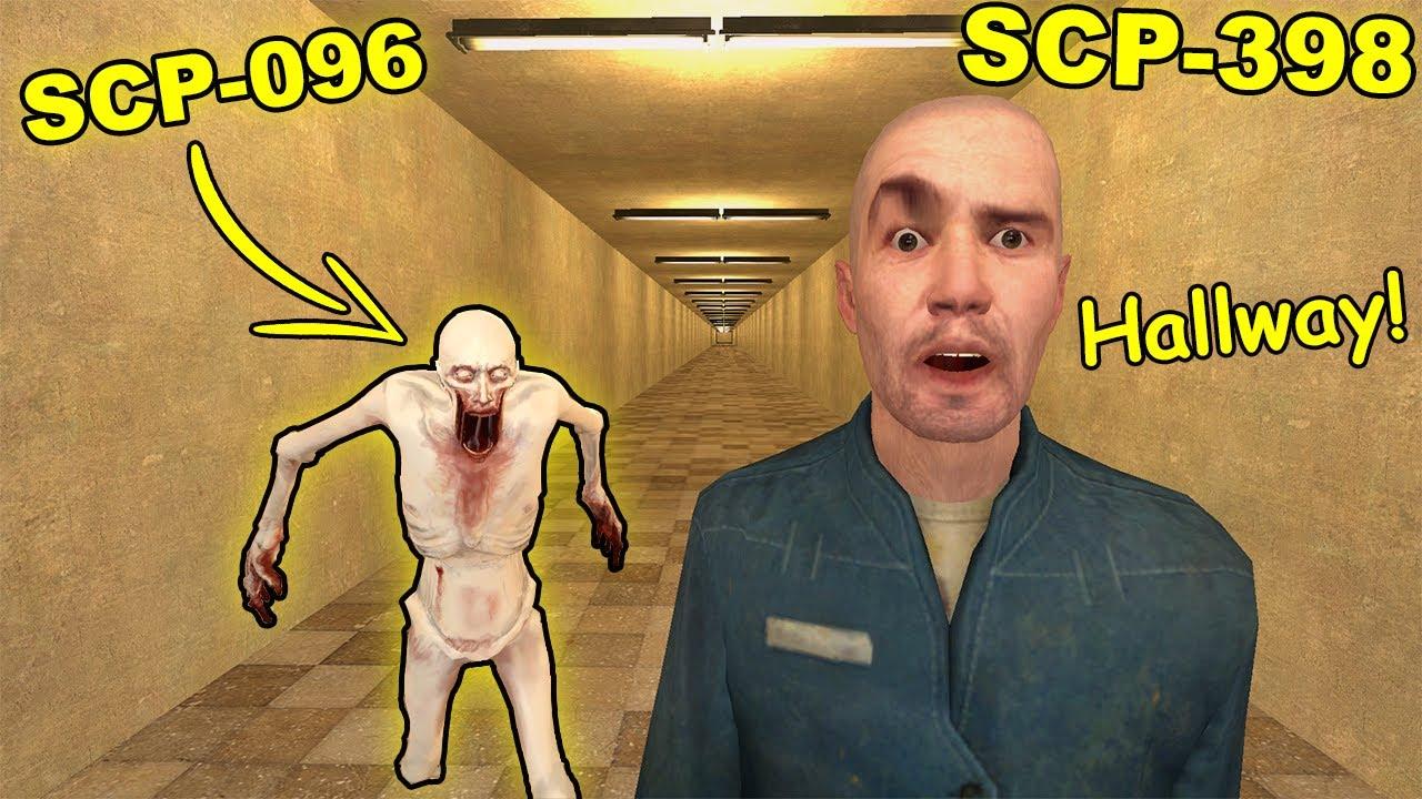 Download Never Go To Hallway SCP-398