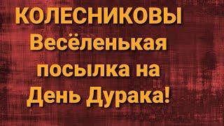 Семья Колесниковых/Весёлая посылка/Обзор влогов.