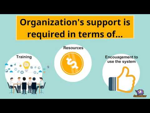Management Information systems used in Amazon