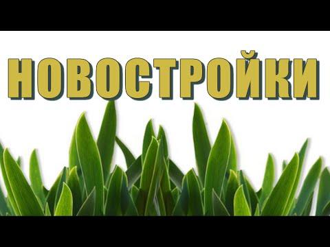 Акции на новостройки Москвы и Подмосковья, купите квартиру