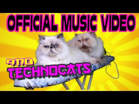 TECHNO CATS – OFFICIAL EPIC MUSIC VIDEO – FUNNY CAT VIDEO