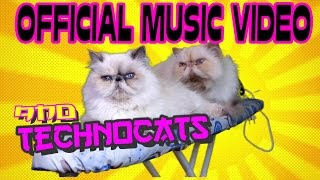 TECHNO CATS - OFFICIAL EPIC MUSIC VIDEO - FUNNY CAT VIDEO