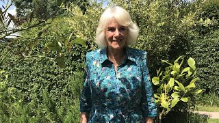 video: Duchess of Cornwall plans wildflower meadow for insects