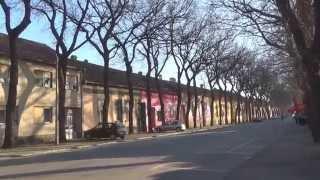 Kikinda - ritam grada