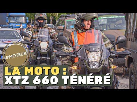 Moteur - la moto 660 XTZ TÉNÉRÉ