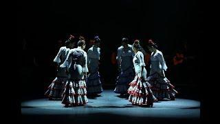 舞踊団30周年記念公演ダイジェスト動画