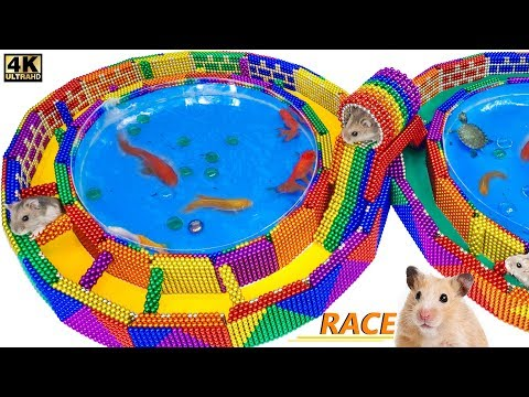 DIY - How To Build Race Track Maze Around Fish Pond For Hamster From Magnetic Balls (Satisfying) |