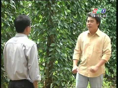 Kỹ thuật sử dụng phân bón qua lá cho cây tiêu  25 9 2012