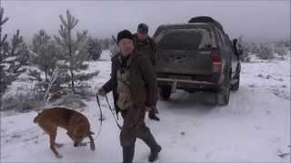 Охота с Р.Г.  Тураном -VI   вл. Саркисян А.Ф.