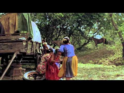 Trailer do filme O Pistoleiro do Rio Vermelho