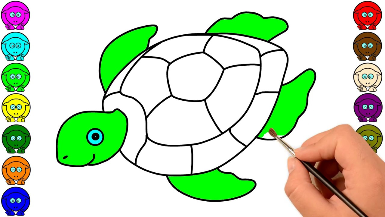 How to draw Tortoise for kids- Coloring Tortoise- Animals Coloring ...