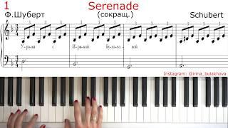 SERENADE SCHUBERT easy СЕРЕНАДА ШУБЕРТ ЛЕГКАЯ ВЕРСИЯ НА ПИАНИНО PIANO Очень красивая мелодия Simple