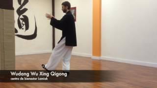 Wudang Wu Xing Qigong