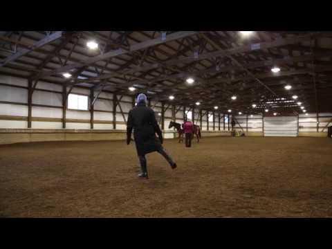 Lunge Line Lesson: Dani and Spirit