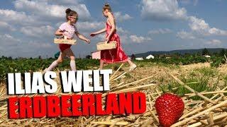 ILIAS WELT - Erdbeerland!