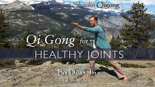 8 Movement Shaolin Qi Gong Ba Duan Jin Short Version