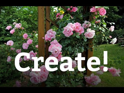 How To Prune And Train A Rose Bush The Home Depot Gardenieres Youtube
