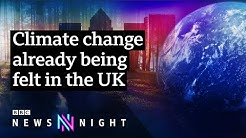 How should the UK tackle climate change - BBC Newsnight
