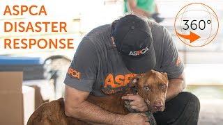 ASPCA Lifesaving Disaster Response  360