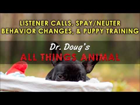 Dr. Doug's All Things Animal-08.05.2017-Spay/Neuter Behavior Changes-Puppy Training