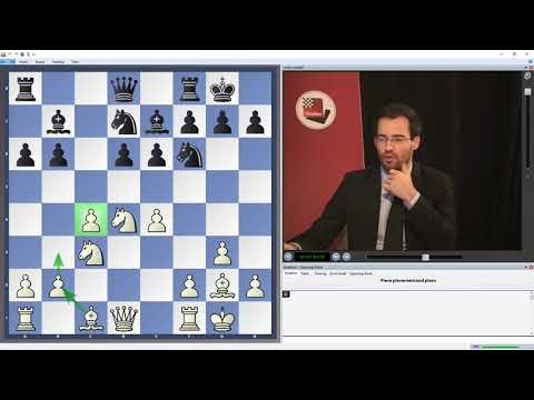 Yannick Pelletier -  The Hedgehog - a universal system against 1.c4 and 1.Nf3