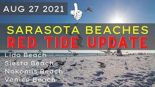 Florida RED TIDE   Sarasota Beaches