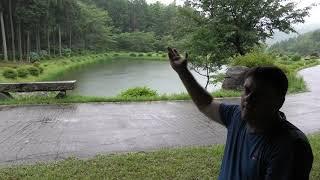 Mike Snaden - Yume Koi Japan, rainy season...