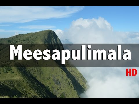 Trekking To Meesapulimala , the 3rd highest peak in western ghats