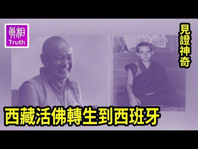 見證神奇:西藏活佛轉生到西班牙