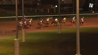 Vidéo de la course PMU PRIX DES ALYSSES