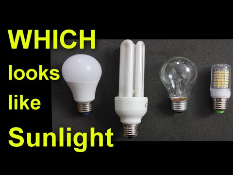 Which light bulb looks most like sunlight?