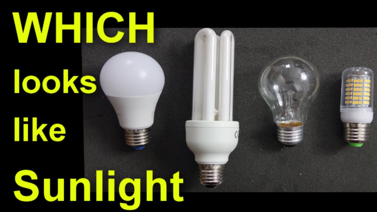 Lightbulb Lights Which Light Bulb Looks Most Like Sunlight