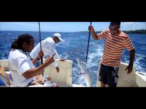 Fishing In Sosua, Dominican Republic - Yacht Charter Rental