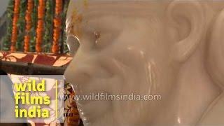 Shirdi's priests performing 'Prana pratishta' ceremony of 'Sai Baba' idol at a temple - Dehradun
